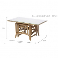 Adjustable Table (Down)