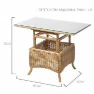 Adjustable Table (Up)