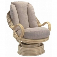 Deluxe Swivel Rocker